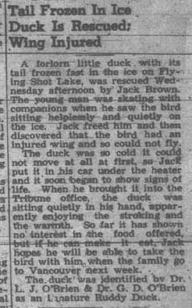 The Herald-Tribune ~ December 8, 1949