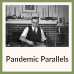 Pandemic Parallels display link