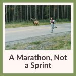 A Marathon, Not A Sprint display link