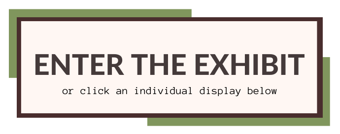 Enter the exhibit button